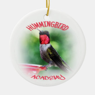 Hummingbird Academy Ornament