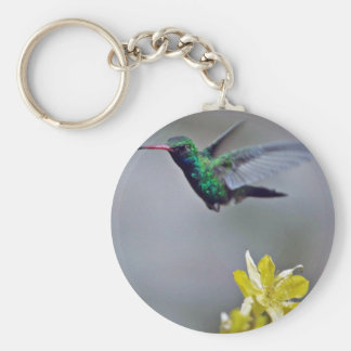 Hummingbird and columbine Red flowers Basic Round Button Key Ring