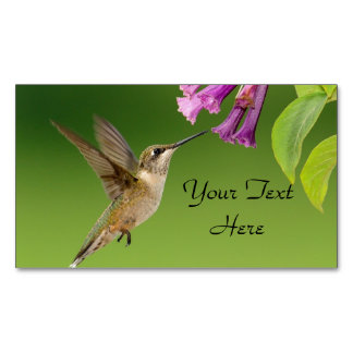 Hummingbird And Flower Magnetic Business Card