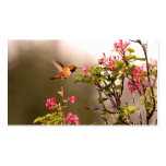 Hummingbird and Flowers Business Card Template