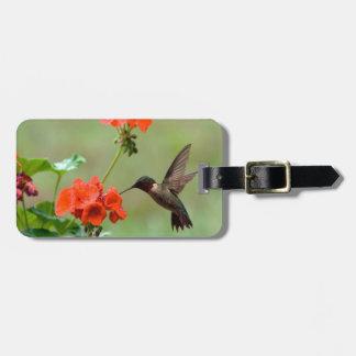 Hummingbird And Flowers Luggage Tag