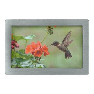 Hummingbird And Flowers Rectangular Belt Buckle