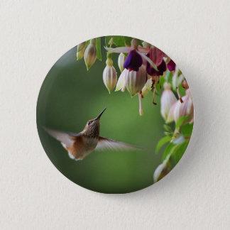 Hummingbird And Fushia Flower Plant Button