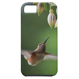 Hummingbird and Fushia Plant iPhone 5 Covers