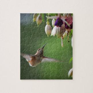 Hummingbird and Fushia Plant Puzzle