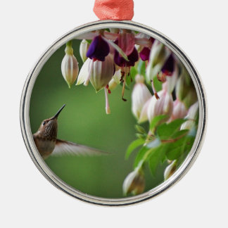 Hummingbird and Fushia Plant Silver-Colored Round Decoration