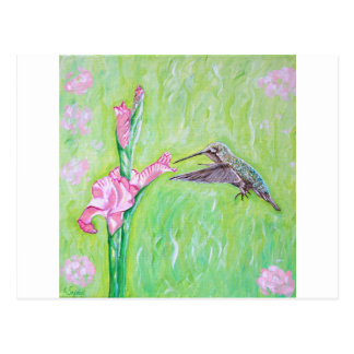 Hummingbird and Gladioli Postcard