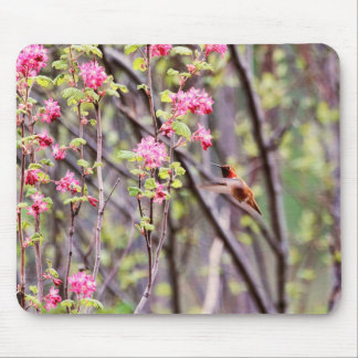Hummingbird and Pink Flowers Mouse Pad