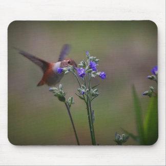Hummingbird And Purple Flowers Mousepad