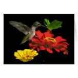 Hummingbird and Zinnias Birthday Greeting Card