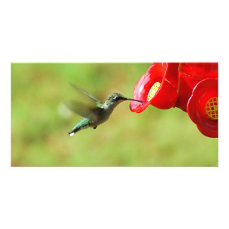 Hummingbird at a feeder picture card