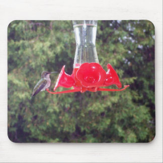 Hummingbird at Feeder Mouse Mat
