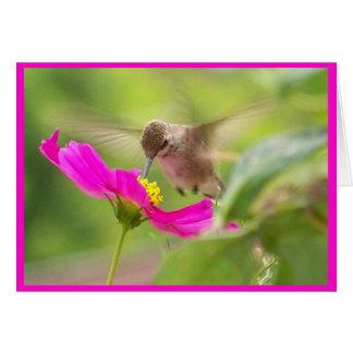 hummingbird Bird Animal Wildlife Floral Card