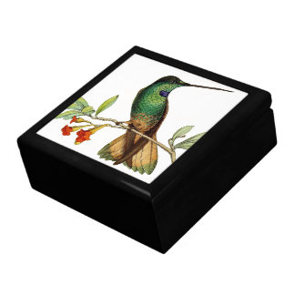 Hummingbird Bird Animal Wildlife Floral Gift Box