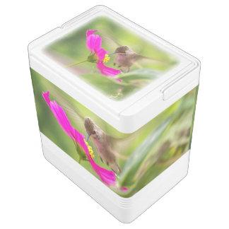 Hummingbird Bird Flower Floral Wildlife Can Cooler Igloo Cooler