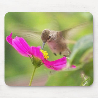 Hummingbird Bird Wildlife Animal Floral Mouse Mat