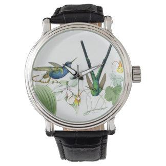 Hummingbird Bird Wildlife Floral Flowers Watch