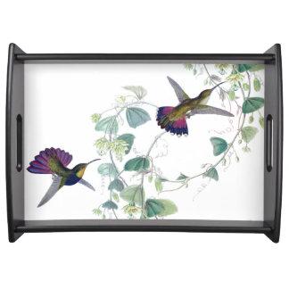 Hummingbird Bird Wildlife Floral Vine Serving Tray