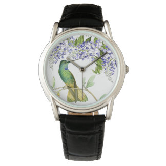 Hummingbird Bird Wisteria Floral Flowers Watch