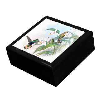 Hummingbird Birds Animals Wildlife Floral Gift Box