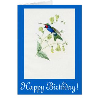 Hummingbird Birds Flowers Floral Wildlife Animals Card