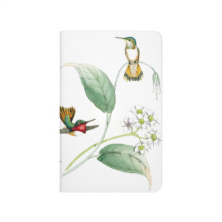 Hummingbird Birds Flowers Wildlife Animals Floral Journal