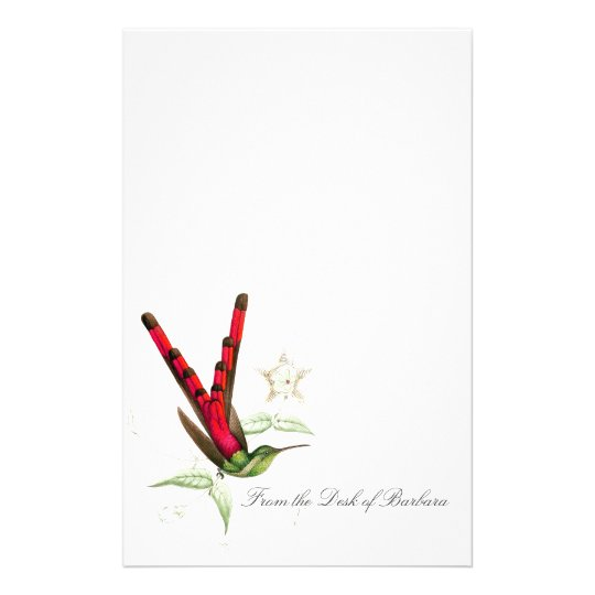 Hummingbird Birds Wildlife Animals Stationery