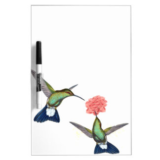 Hummingbird Birds Wildlife Floral Dry Erase Board
