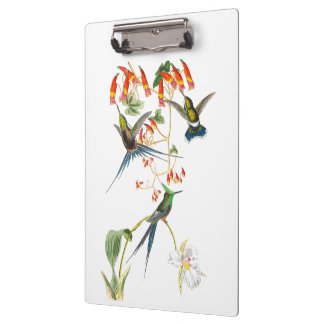 Hummingbird Birds Wildlife Flowers Clipboard