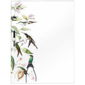 Hummingbird Birds Wildlife Flowers Dry Erase Board