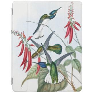 Hummingbird Birds Wildlife Flowers Ipad Cover