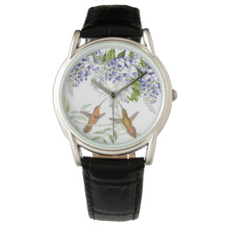 Hummingbird Birds Wisteria Floral Flowers Watch