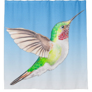 Hummingbird Blue Shower Curtain