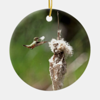Hummingbird Building a Nest Christmas Ornament