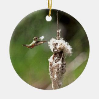 Hummingbird Building a Nest Christmas Ornaments
