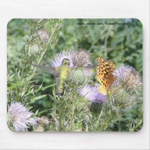 Hummingbird & Butterfly Feeding On Thistle Flower Mouse Pads