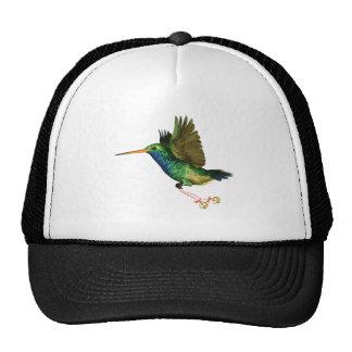Hummingbird Christmas Hat