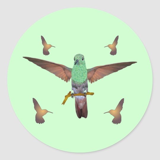 Hummingbird Classic Round Sticker