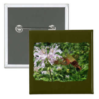 Hummingbird Clear Wing Moth Coordinating Items 15 Cm Square Badge