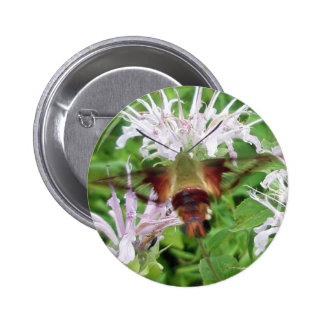 Hummingbird Clear Wing Moth Coordinating Items 6 Cm Round Badge