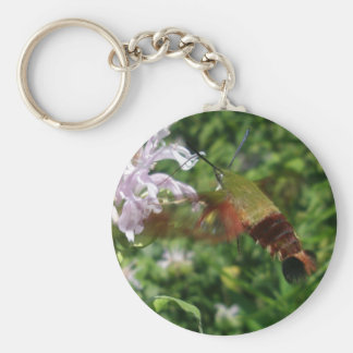 Hummingbird Clear Wing Moth Coordinating Items Basic Round Button Key Ring