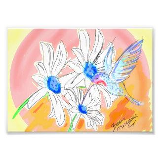 Hummingbird daisy digital design photo art