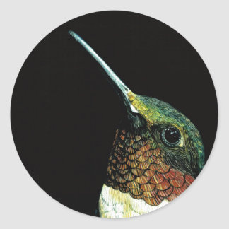 Hummingbird design classic round sticker