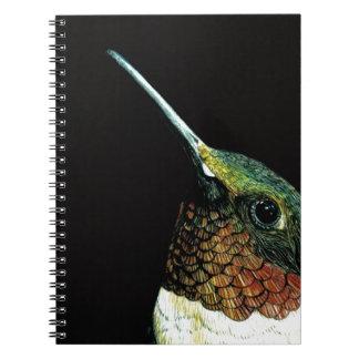 Hummingbird design notebook