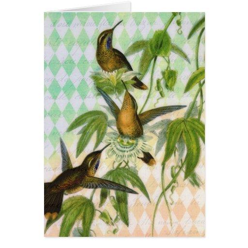 Hummingbird Digital Art Greeting Card