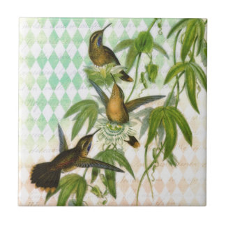 Hummingbird Digital Art Tile