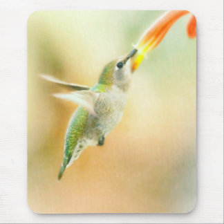 Hummingbird early morning flight mouse mat