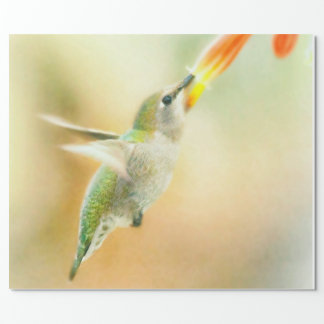 Hummingbird early morning flight wrapping paper