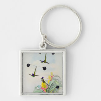 Hummingbird, engraved by Walter and Cohn Key Ring