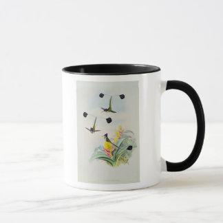 Hummingbird, engraved by Walter and Cohn Mug